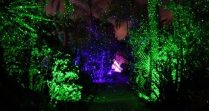 party light for gardens