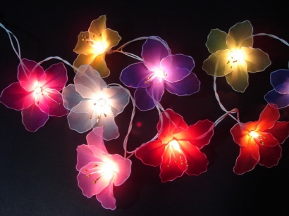 Mixed Colour Hibiscus String light