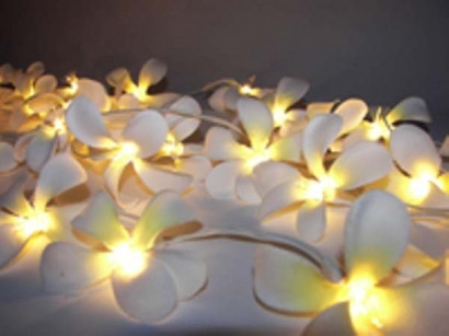 White Frangipani Style Fairy Light Great For Decorating